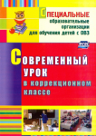 Татьяна Нелипенко: Современный урок в коррекционном классе